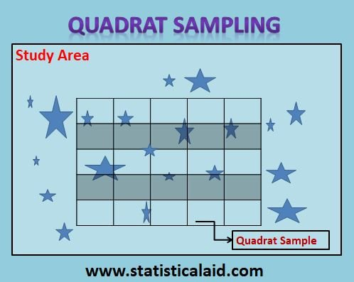 Quadrat Sampling: Application with Advantages and Disadvantages